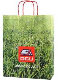 cmyk printed paper shopping bag pa03